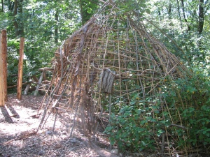 twig structure